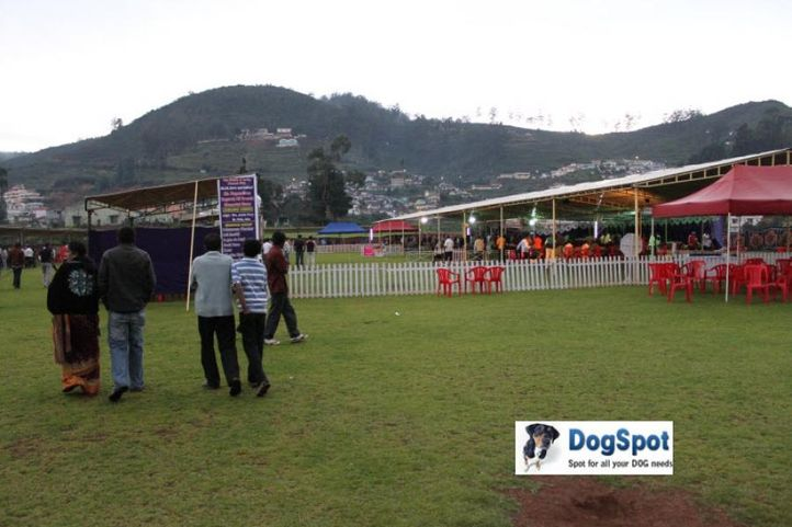 sw-18, ground,, Ooty Dog Show 2010, DogSpot.in