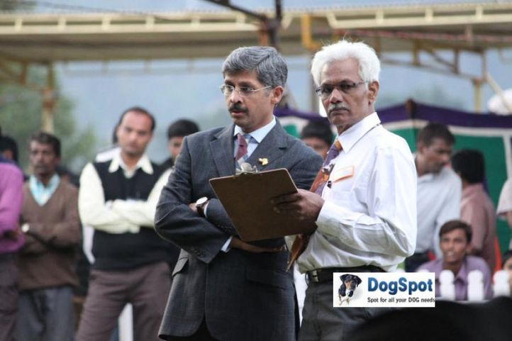 sw-18, judges,mr lingam,ring steward,, Ooty Dog Show 2010, DogSpot.in