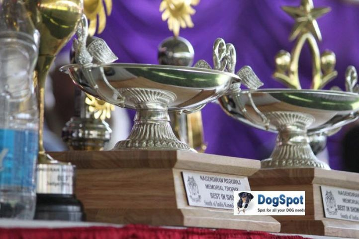 sw-18, trophy,, Ooty Dog Show 2010, DogSpot.in