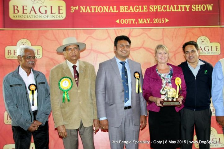 beagle,beagle speciality,line-up beagle speciality,, Ooty Specialities & All Breed Dog Show, DogSpot.in