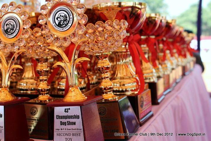 show trophy,sw-68,, Orissa Dog Show, DogSpot.in