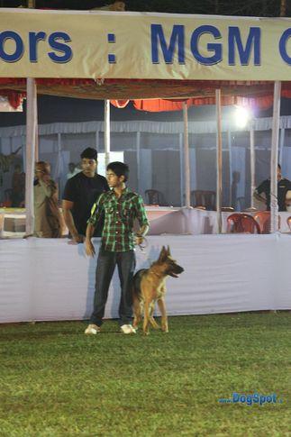 child handler,sw-10,, Orissa Kennel Club 2010, DogSpot.in