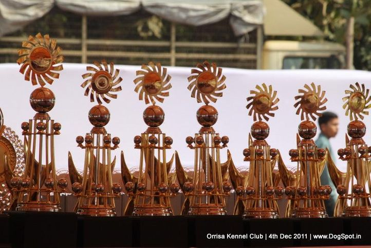 sw-45,trophies,, Orrisa Kennel Club, DogSpot.in