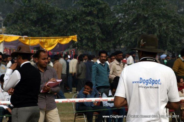 sw-32,, Patiala Kennel Club 2011, DogSpot.in