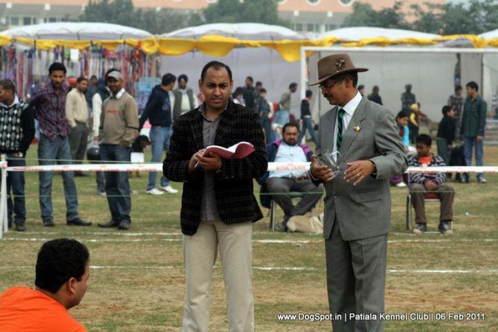 ground,judges,ring steward,sw-32,, Patiala Kennel Club 2011, DogSpot.in