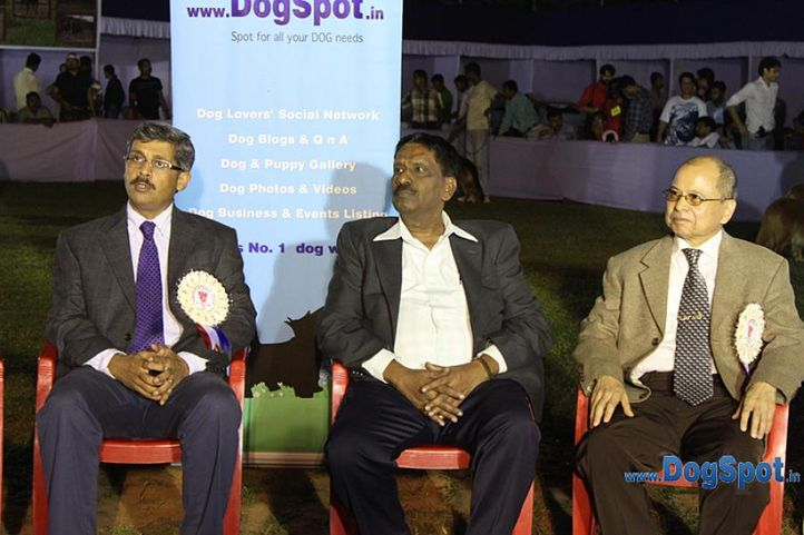 judges,lineup,sw-10,, Prize Distribution, DogSpot.in