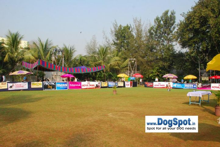 Ground,, Pune 2010, DogSpot.in
