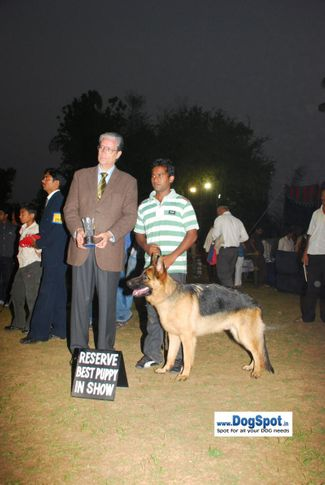 Lineup,, Pune 2010, DogSpot.in