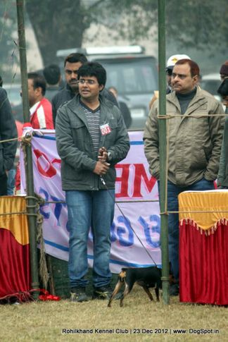 sw-74,, Rohilkhand Dog Show , DogSpot.in