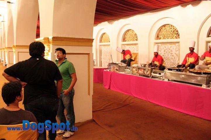 sw-36, ankur,delhi,people,rottweiler,rottweiler speciality show,, Rottweiler Speciality 2011 April, DogSpot.in