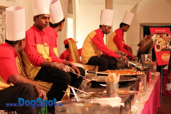 sw-36, delhi,food,rottweiler,rottweiler speciality show,, Rottweiler Speciality 2011 April, DogSpot.in