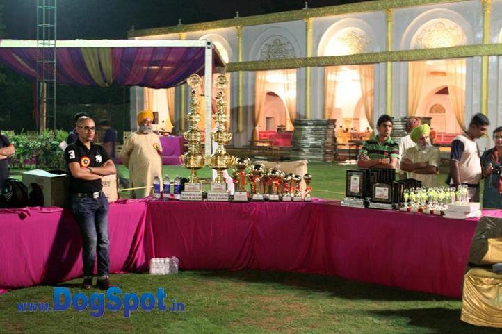 sw-36, delhi,rottweiler,rottweiler speciality show,trophies,, Rottweiler Speciality 2011 April, DogSpot.in