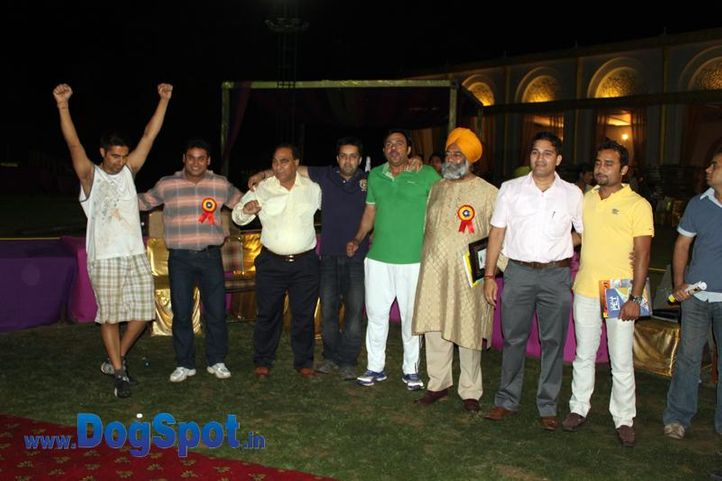 sw-36, committee,delhi,rottweiler,rottweiler speciality show,, Rottweiler Speciality 2011 April, DogSpot.in