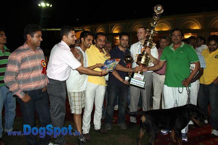 sw-36, delhi,ex-25,lineup,rottweiler,rottweiler speciality show,, VILLLI CRNI LOTOS, Rottweiler, DogSpot.in