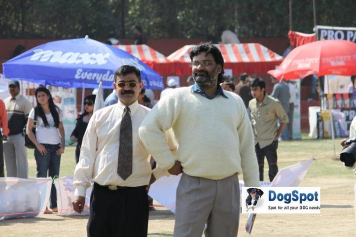 Committee,Ground,, Royal Kennel Club, DogSpot.in