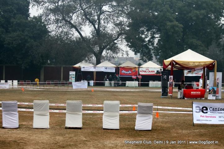 ground,sw-20,, Shepherd Club Delhi, DogSpot.in