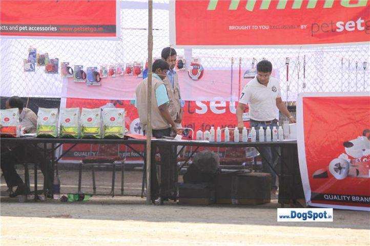 s,ground,stalls,, Shimla 2010, DogSpot.in