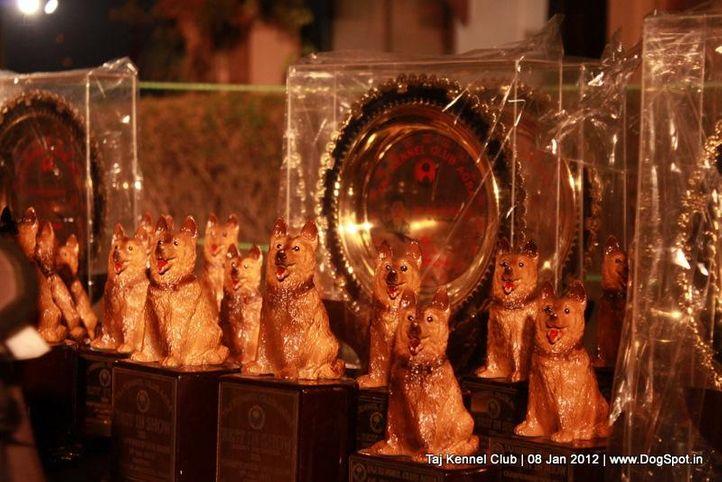ground,sw-51,, Taj Kennel Club 2012, DogSpot.in