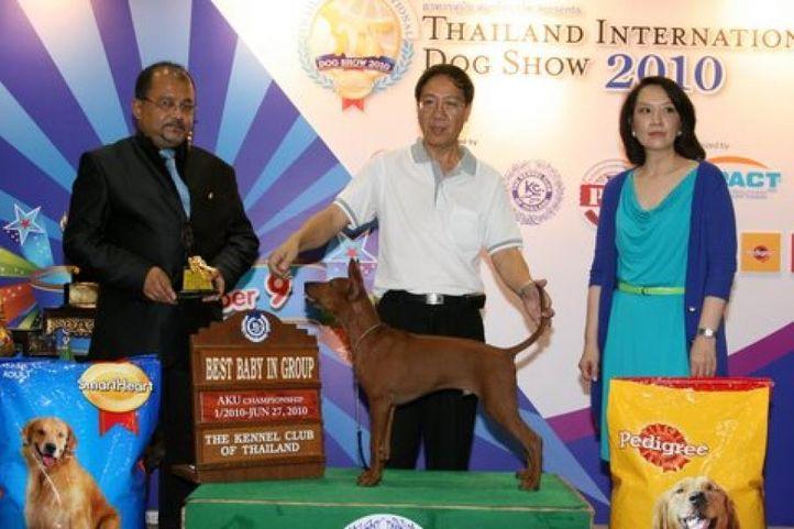 lineup,thai,, Thailand International Dog Show, DogSpot.in