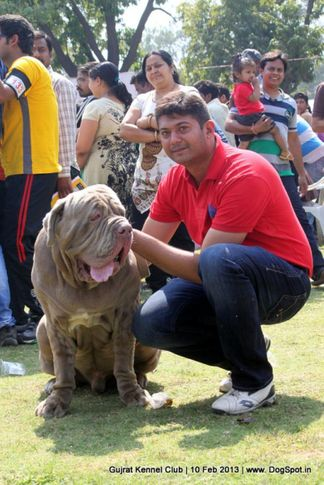 people,sw-83,, Vadodara Dog Show , DogSpot.in