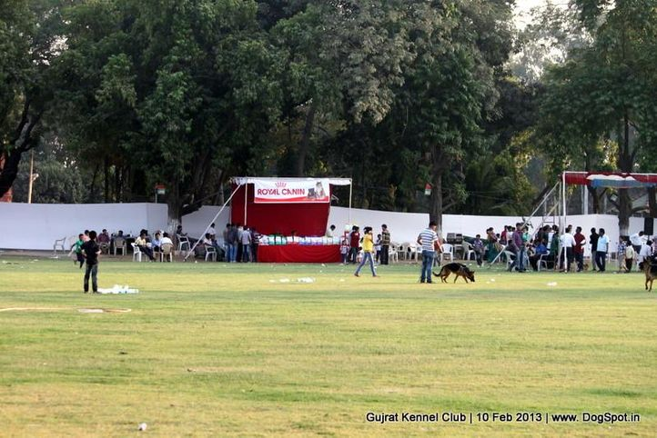 show ground,sw-83,, Vadodara Dog Show , DogSpot.in