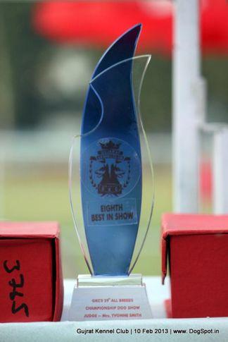 show trophy,sw-83,, Vadodara Dog Show , DogSpot.in